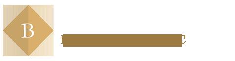 Boston Logan Car Service Logo